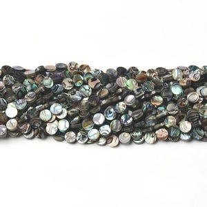 Rainbow Abalone Paua Shell Flat Coin Beads 8mm Strand Of 45+ Pieces CB45702