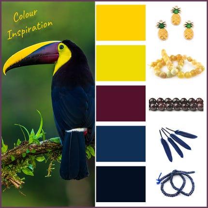 Toucan Inspiration