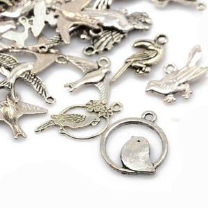 Antique Silver Tibetan Zinc Mixed Bird Charms 5-40mm Pack Of 30g HA07390
